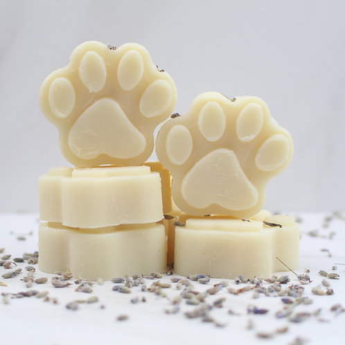 Lavender Essential Oil dog shampoo