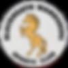 bwsc logo.png