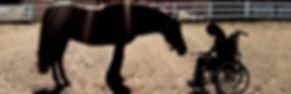 DakNong-horsetherapy.jpg