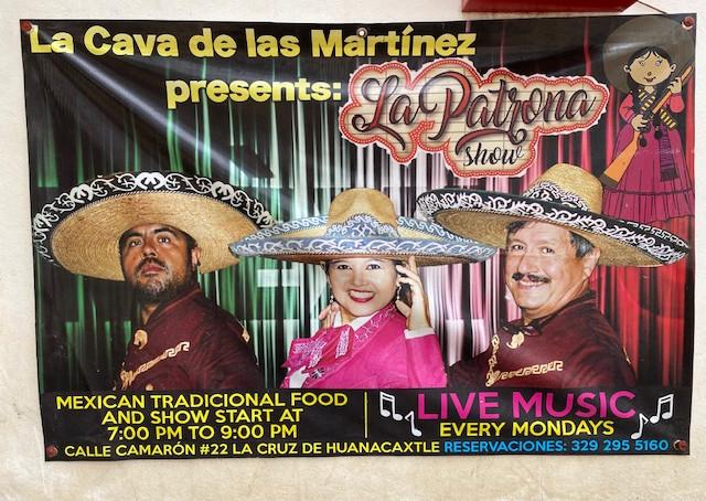 Live Music & Performances