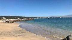 view beach at Vallarta Gardens fred -88.