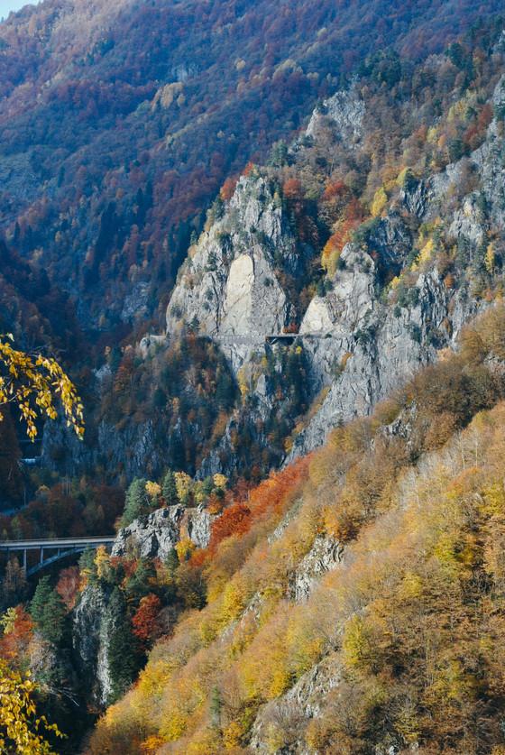 Fall under a bridge of colors.