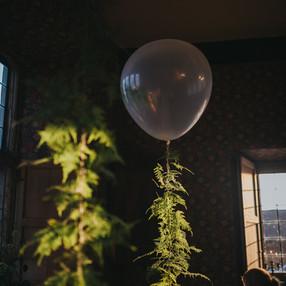 Fern helium ballons
