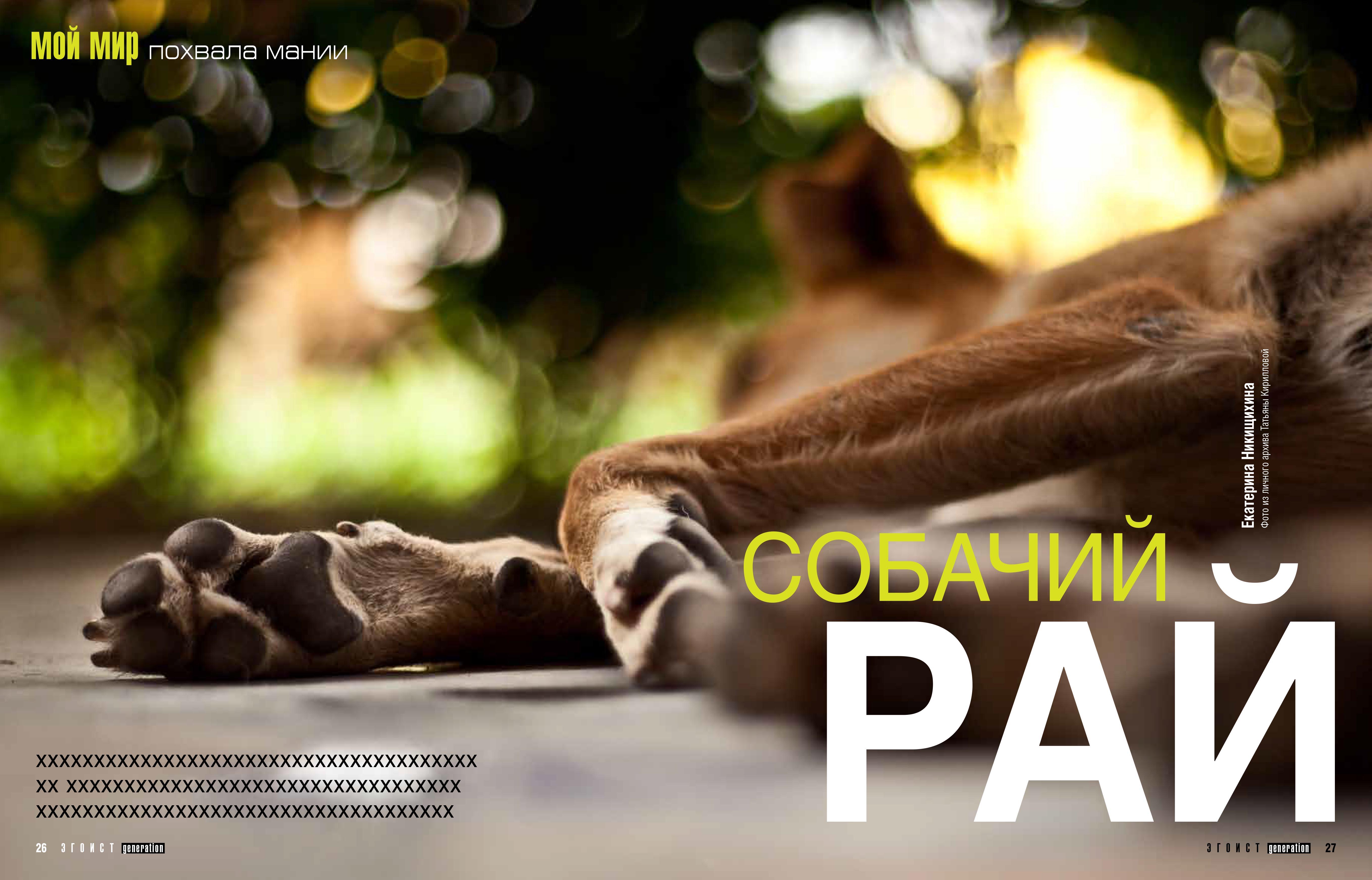 Собака Бода (1)21