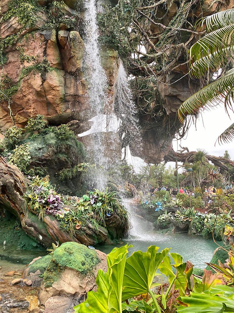 FarFromBA_Disney_Orlando_TuristaEnBuenosAires_Pandora