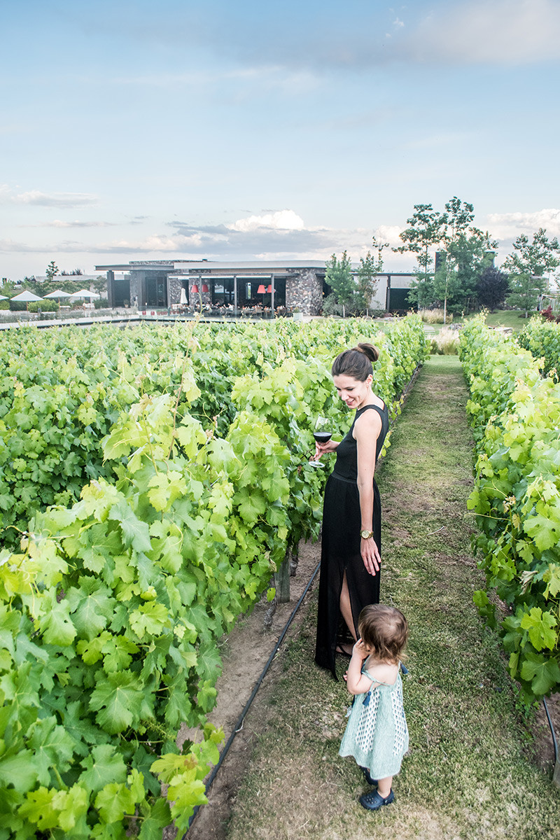 NearBa_MEndoza_RutaDelvino_Wine_TheVinesOfMendoza