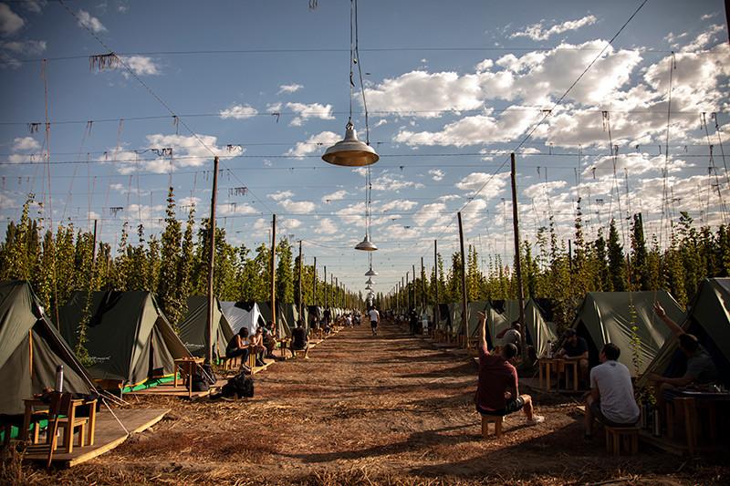 NearBA_TuristaEnBuenosAires_Patagonia_Cosecha_Lupulo_FernandezIPA_camping