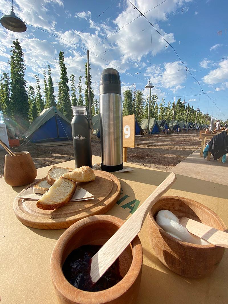 NearBA_TuristaEnBuenosAires_Patagonia_Cosecha_Lupulo_FernandezIPA