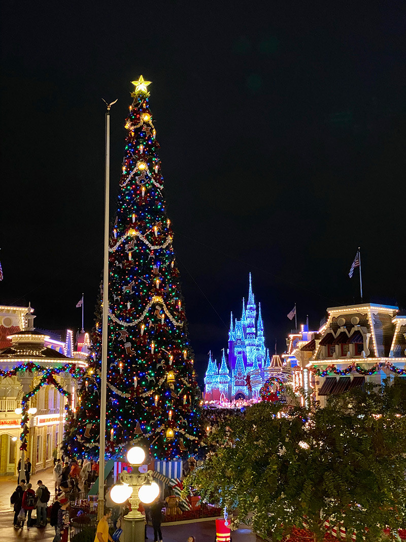 FarFromBA_Disney_Orlando_TuristaEnBuenosAires_MagicKingdom