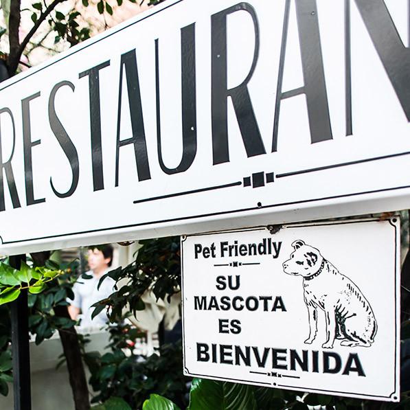 BuenosAires_PetFriendly_Mascota_CafeEvita