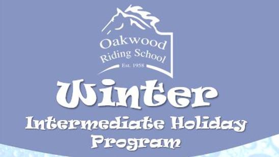 Intermediate Holiday Program