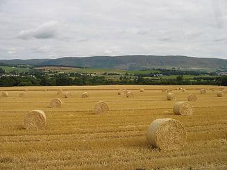 Baldernock hay bales lovely.jpg