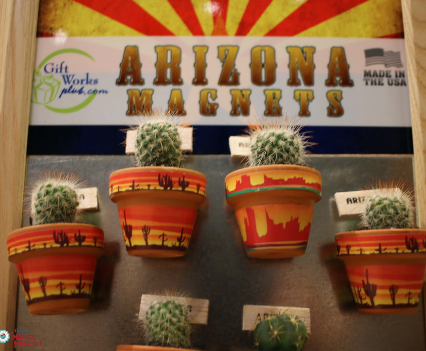 Cactus Magnets.jpg