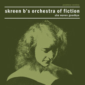 Skreen B's Orchestra Of Fiction