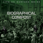 Life As Surface Noise