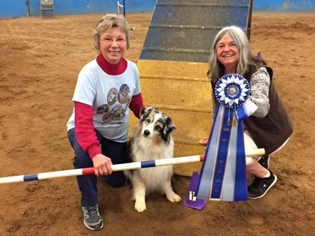 Secret earns her MACH and Griff his HSAd title