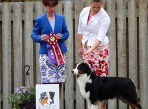 Dove new ASCA Champion!