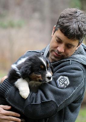 Australian Shepherd breeder Ontario
