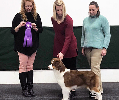 A great weekend for several Ninebark dogs