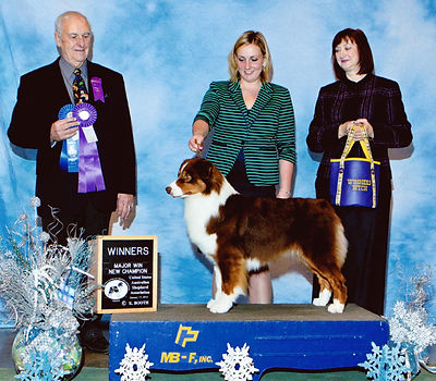 AKC/ASCA/CKC Ch Ninebark Wishing Well