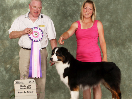 Back to back Best in Show for Dove!
