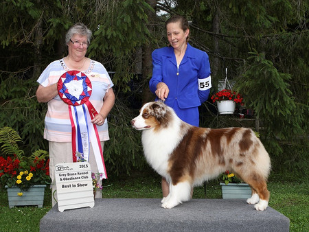 Best in Show for Lock at Grey-Bruce KC