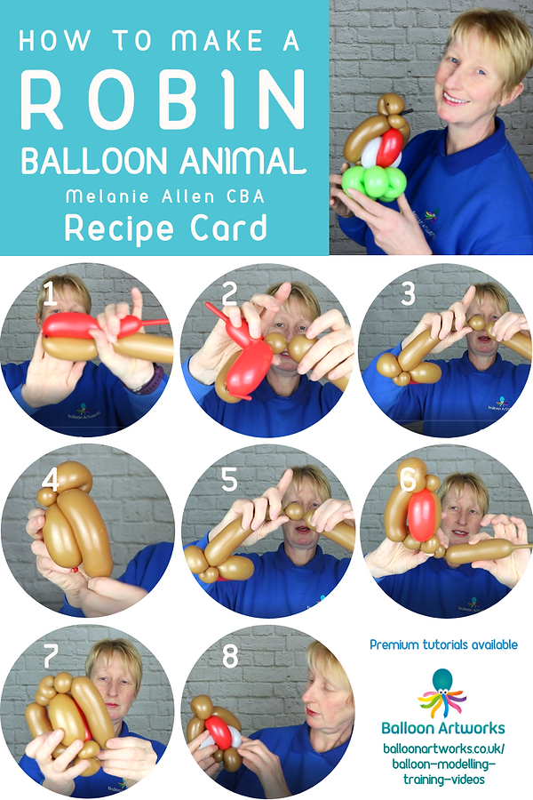 Robin balloon animal recipe Balloon Artw
