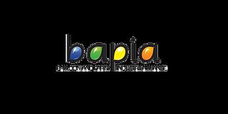 BAPIA logo.png