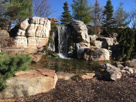 Aquascape Academy Ponds