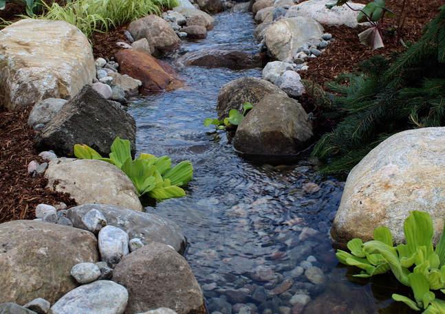 Beautiful Stream - Custom Built by Lavish Gardens