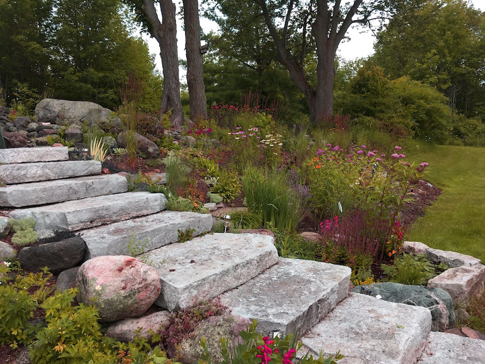 Perennial Meadow Style Garden on a Slope