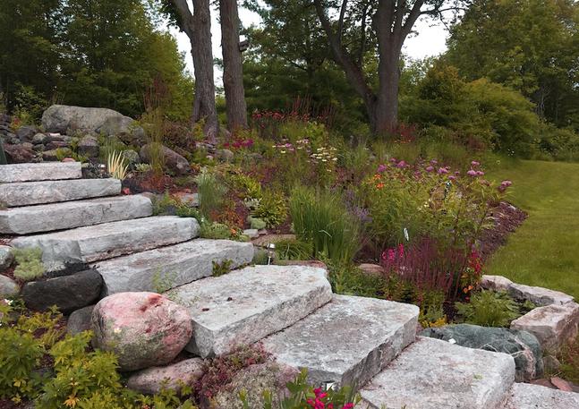 Perennial Meadow Style Garden on a Slope