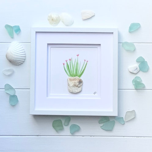 Beach shell Cactus flower framed picture