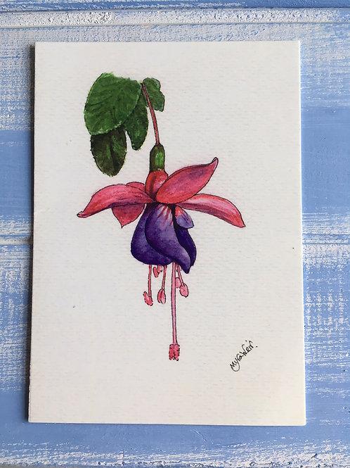 'Fuchsia' Card. 28
