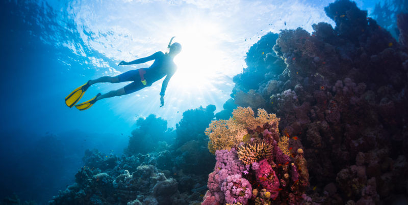 Scuba Diving and Snorkeling on a Boat