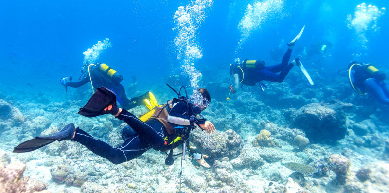 Scuba Diving (for uncertified divers)