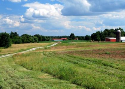 Land Conservation.png