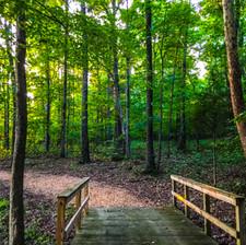 Path around Mary's Lake