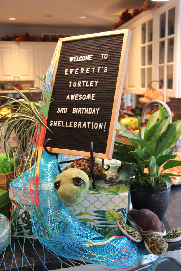 TURTLEY AWESOME SHELLEBRATION