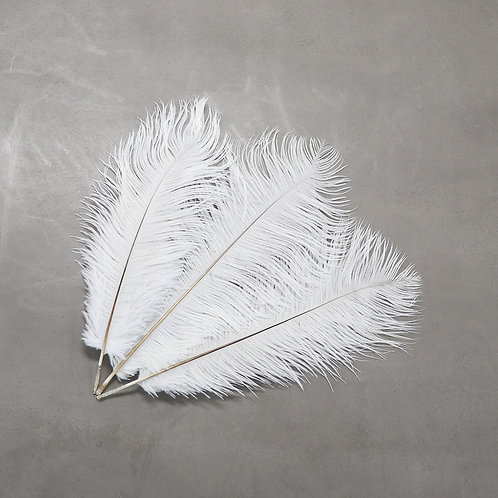Ostrich Feather - 30-35 cm