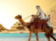 Egypt_Desert_Camels_Coast_Ships_Sailing_