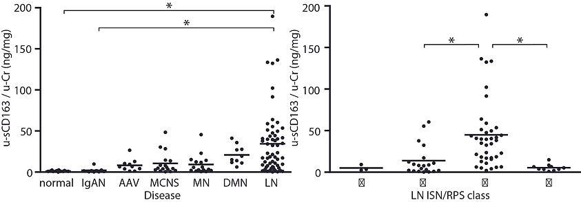 白血球発現タンパクを用いた新規腎疾患バイオマーカー開発