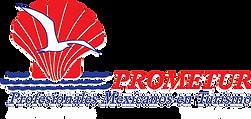 Prometur_Logo Shdw-White.png