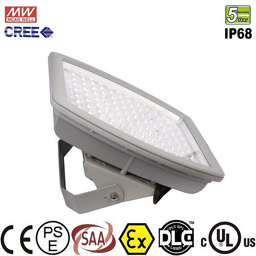 Explosion-Proof Flood Light 100W