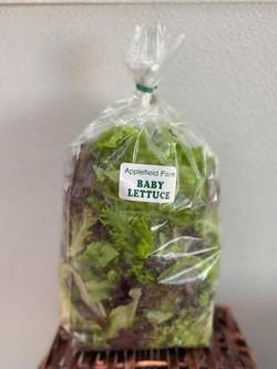 Baby Lettuce