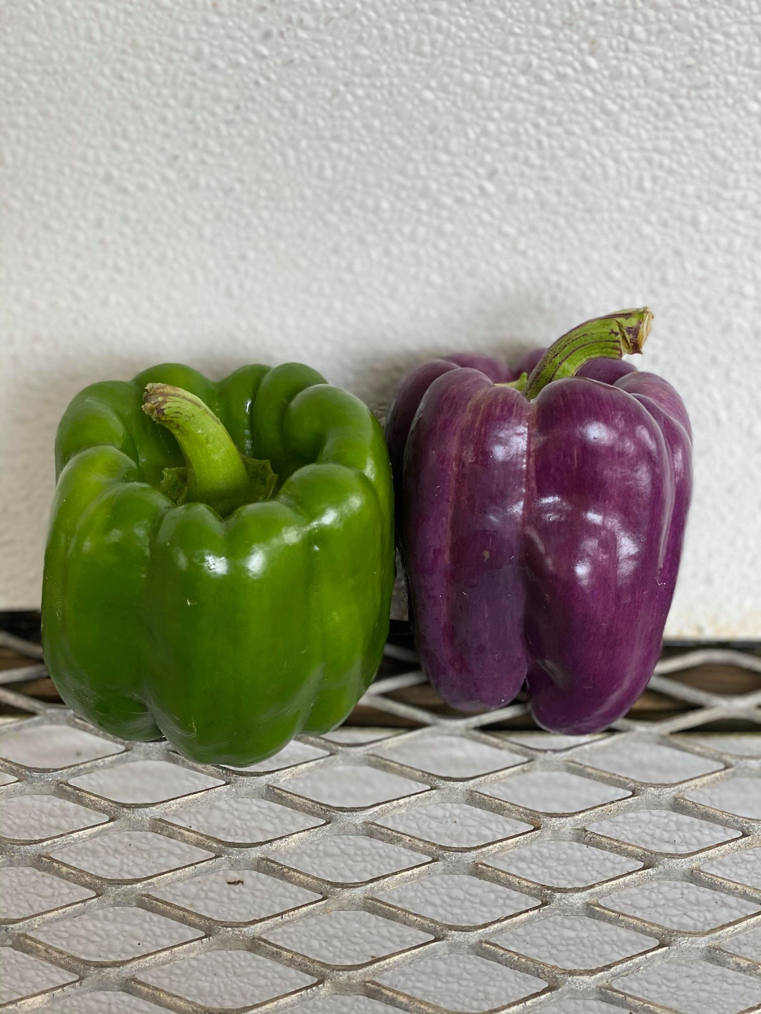 Bell Peppers (sweet)