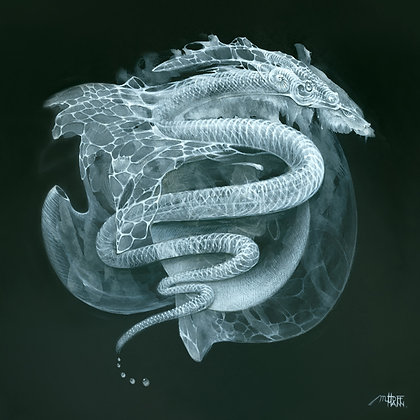 MH Limited Edition Print on Canvas - 'S' For SNAKE