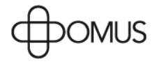 Logo Domus_Schreinerei Holder