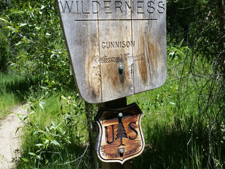 Raggeds Wilderness Trail Repair and Reconstruction