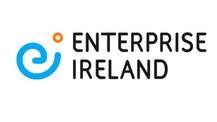 Enterprise Ireland's Covid19 Online Retail Scheme. Info & Tips